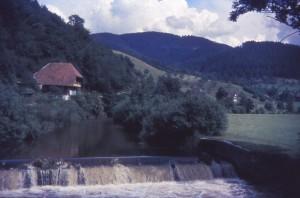 schwez64_0040
