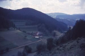 schwez64_0047