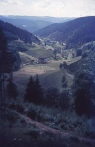 schwez64_0049