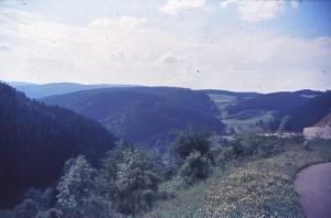 schwez64_0050