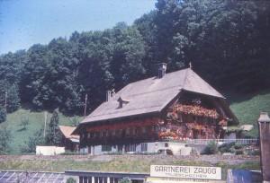schwez64_0111