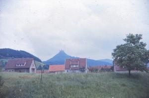 schwez64_0115